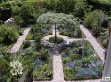 Pyrus salicifolia 'Pendula' -weidenblättrige Birne-